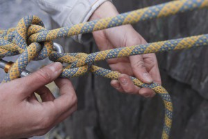 Clove Hitch back to a HMS screwgate karabiner.